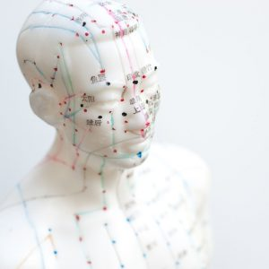 Inner Balance Acupuncture | Meridian Man Doll